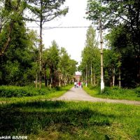 Центральная аллея Высоковского парка, Высоковск