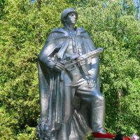 Братская могила в городском парке г.Высоковска. Захоронено 85 человек. Скорей всего это умершие от ран в ППГ №676 в декабре 1941-январе 1942 г.г., Высоковск
