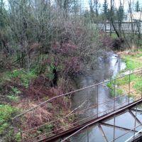 Речка возле пограничного госпиталя, Голицино