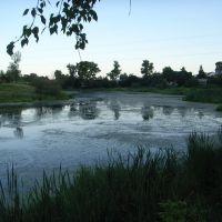 08.2011, Голицино