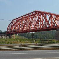 Электропоезд на мосту через канал им. Москвы, Деденево