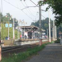 """платформа """"Турист"""", Деденево"""