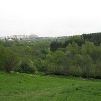 Вид от Дедовска на Нахабино, Дедовск
