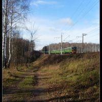 Недалеко от станции Миитовская, Дедовск