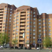 Вид на Ногина 2, Дедовск