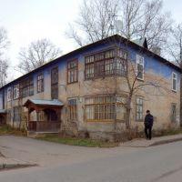 Керамическая ул.дом №1 (02.11.10), Дедовск