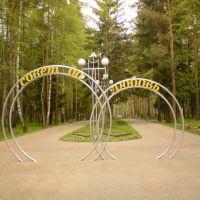 Аллея парка, Домодедово