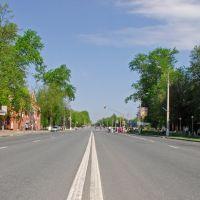 Каширское шоссе(к Москве), Домодедово