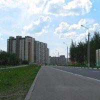 Вид на новостройку,2010, Домодедово