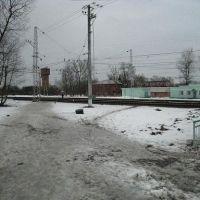 у станции, Дорохово