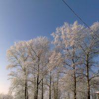 Мороз и Солнце, Дорохово