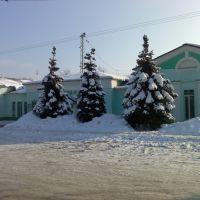 Возле вокзала, Дорохово