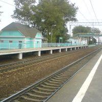 Станция Дорохово. 25.08.2010, Дорохово