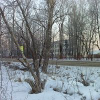 Школа в Дорохово, Дорохово