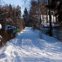 Зимние дороги, Дубки