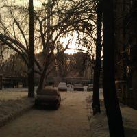 Солнечное затмение, Дубки