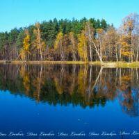 Озеро (панорама), Дубки