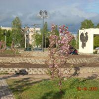 Весной у ЗАГСа, Дубна