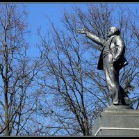Егорьевск. Памятник В.И.Ленину, Егорьевск