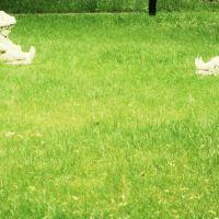 скульптуры в парке, Железнодорожный