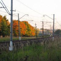 """У платформы """"Весенняя"""", Железнодорожный"""