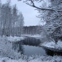 Пруд зимой, Железнодорожный