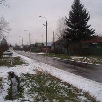 Первомайская улица, Жилево