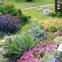 Мой ботанический сад, Жилево
