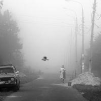 Синица в тумане, Жилево