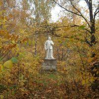 Strela, Жуковский