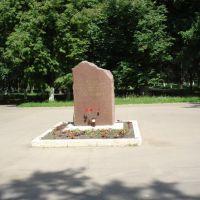 ЛЕНИНУ, Жуковский