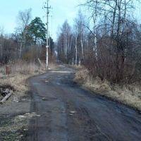 Дачная дорога, Загорянский