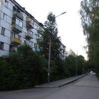 Ул. Димитрова, Загорянский