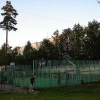 Баскетбольная площадка, Загорянский