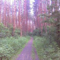 Road, Загорянский