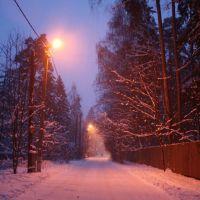 Зимний вечер, Загорянский