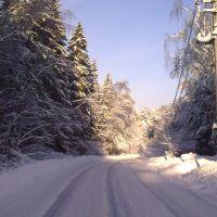 дорога на Оболдино, Загорянский
