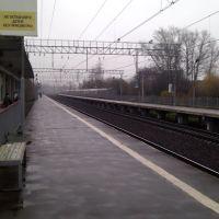платформа Соколовская, Загорянский