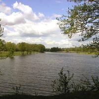 Река Гуслица (egorievsk.orc.ru), Запрудная