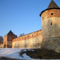 Стены и башни крепости. Зарайск, Зарайск