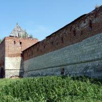 Башня кремля в г. Зарайске, Зарайск