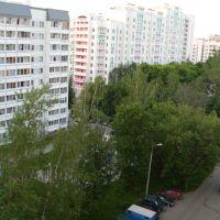 Вечером 30 мая на Березовой аллее, Зеленоград