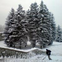 Снегопад, Зеленоград