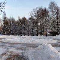 Место посадки, Зеленоград