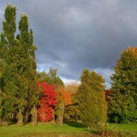 Россия. г. Зеленоград. Осень. Russia. Zelenograd. Autumn., Зеленоград