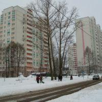 Новые дома на улице летчика Полагушина, Зеленоград