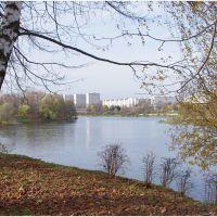 Зеленоград. Городской пруд. 10.2012., Зеленоград