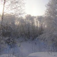 Озеро зимой..., Икша