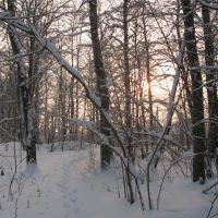 Зимнее Солнце (Winter Sun), Икша