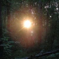 Таинственный свет (Mysterious light), Икша
